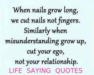 misunderstanding-quotes