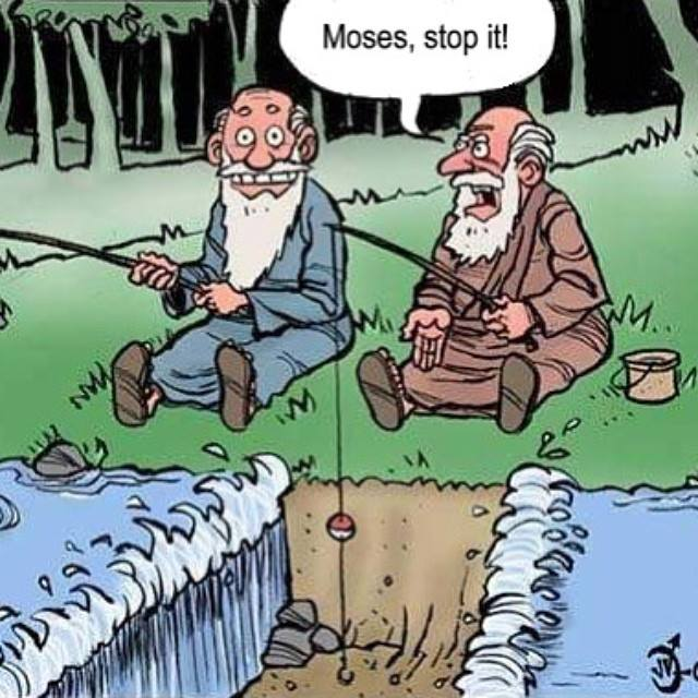 Moses_STOP_IT